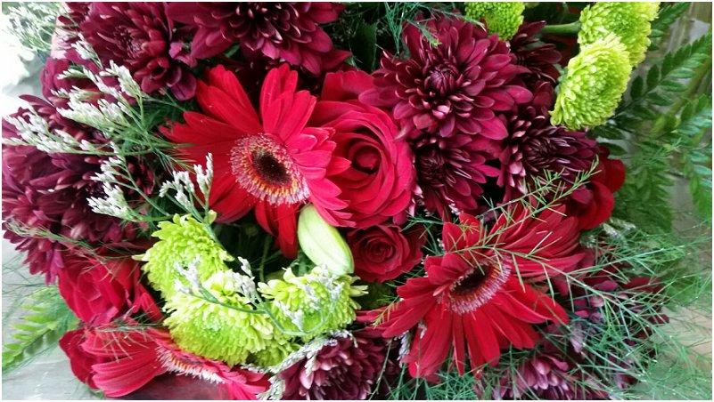 Mpumalanga trou bloemis
