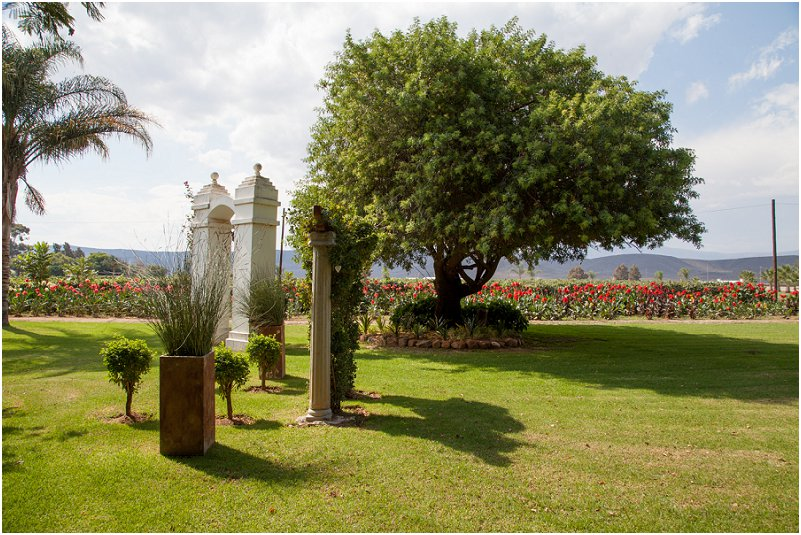 things to do in robertson wine valley