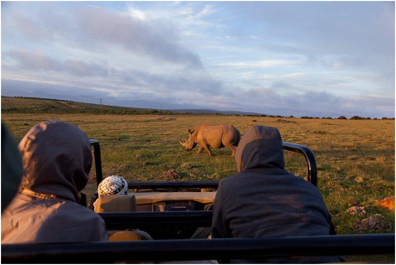 gondwana game reserve Rhinoceros