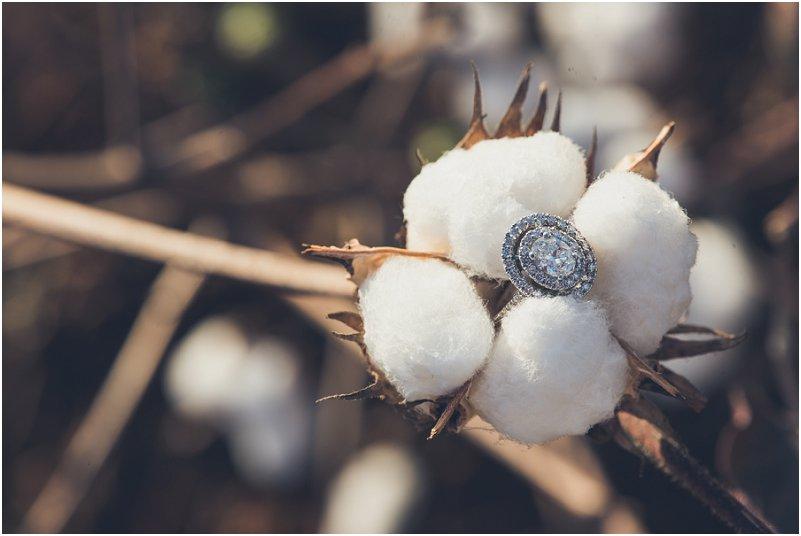 cotton field engagement pictures