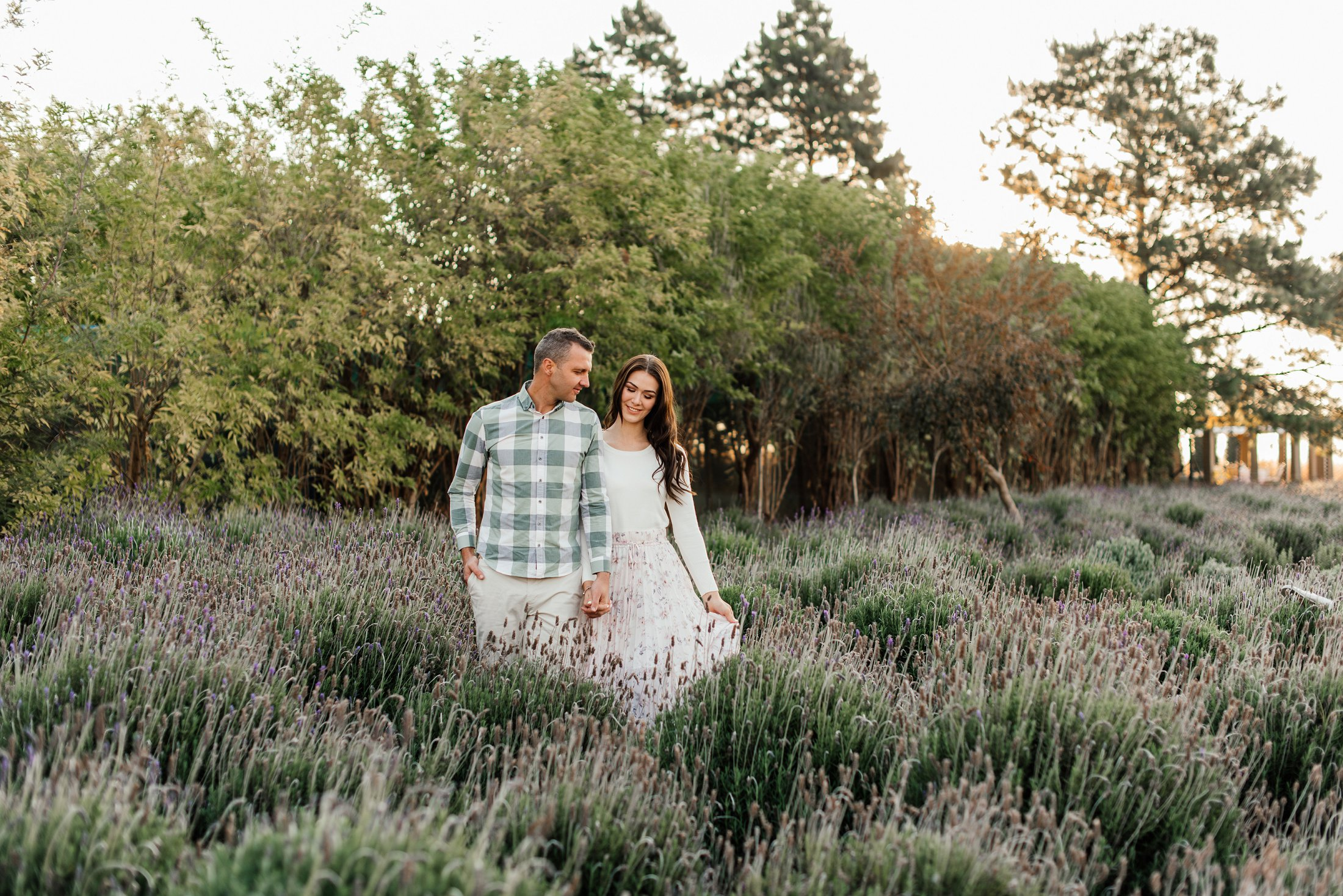 lavender field engagement shoot